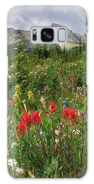 Indian Peaks Wilderness Galaxy Case - Indian Peaks Paintbrush by Aaron Spong