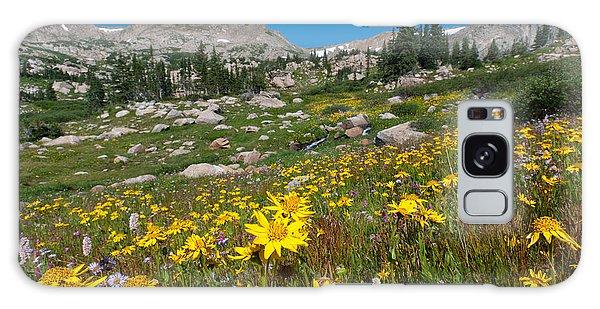 Indian Peaks Summer Wildflowers Galaxy Case