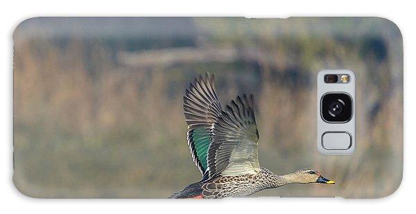 Indian Spot-billed Duck 03 Galaxy Case