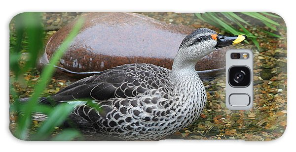 Indian Spot-billed Duck Galaxy Case