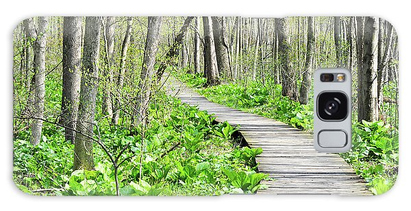 Indiana Dunes Great Green Marsh Boardwalk Galaxy Case