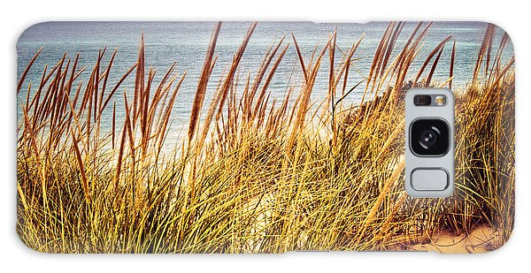 Indiana Dunes National Lakeshore Galaxy Case