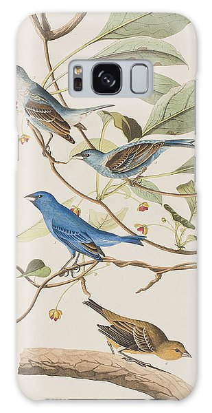 Finch Galaxy S8 Case - Indigo Bird by John James Audubon