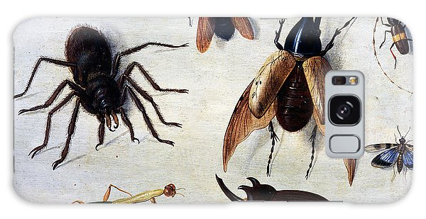 Insects, 1660 Galaxy Case
