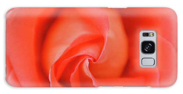 Inside The Rose Galaxy Case