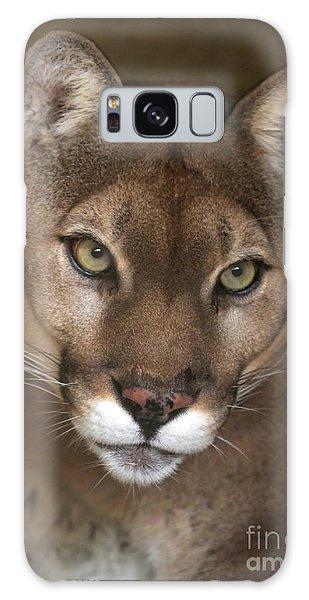 Intense Cougar Galaxy Case
