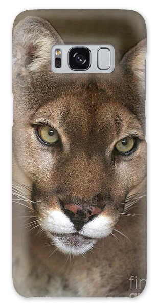 Intense Cougar Galaxy Case