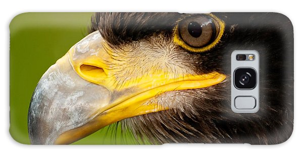 Intense Gaze Of A Golden Eagle Galaxy Case
