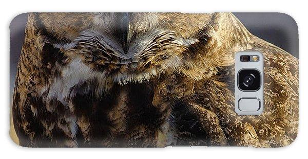 Intense Owl Galaxy Case