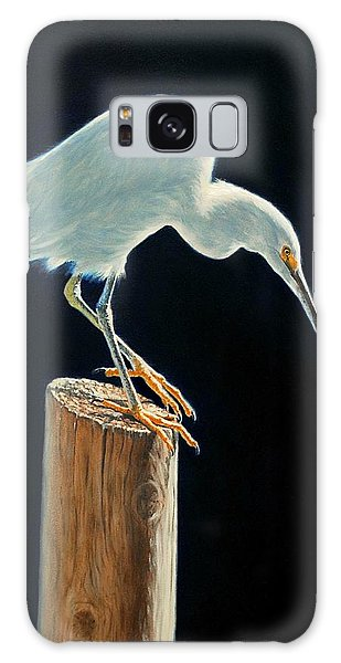 Interlude - Snowy Egret Galaxy Case