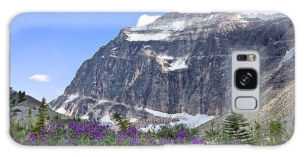 Interpretive Apps In The Canadian Rockies Galaxy Case