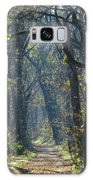 Into The Wood Galaxy Case