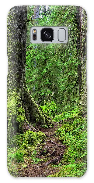 Olympic National Park Galaxy Case - Into The Woods by Stephen Stookey