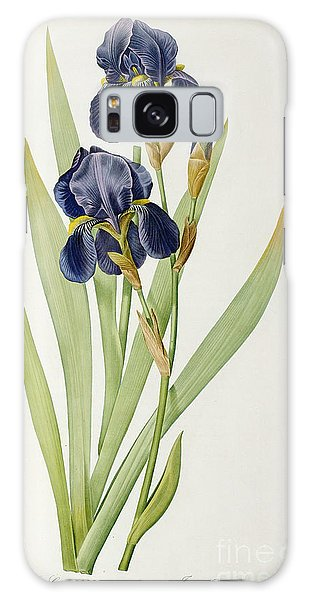 Joseph Galaxy Case - Iris Germanica by Pierre Joseph Redoute
