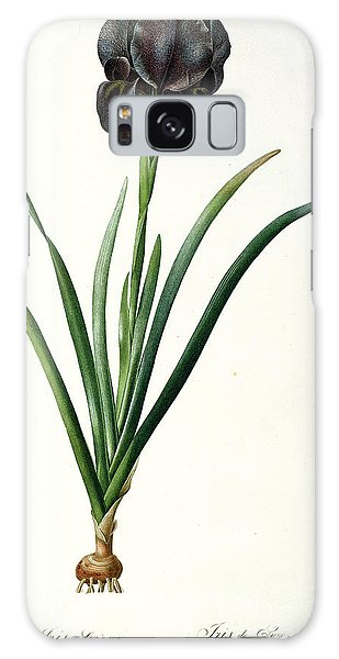 Botanical Garden Galaxy Case - Iris Luxiana by Pierre Joseph  Redoute