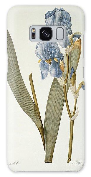 Iris Pallida Galaxy Case by Pierre Joseph Redoute