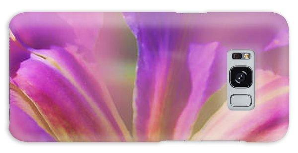 Iris Panorama Galaxy Case