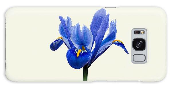Iris Reticulata, Cream Background Galaxy Case