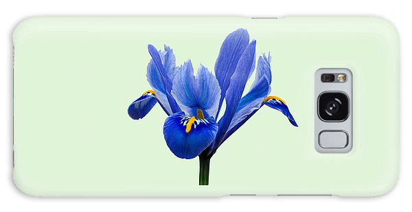 Galaxy Case featuring the photograph Iris Reticulata, Green Background by Paul Gulliver