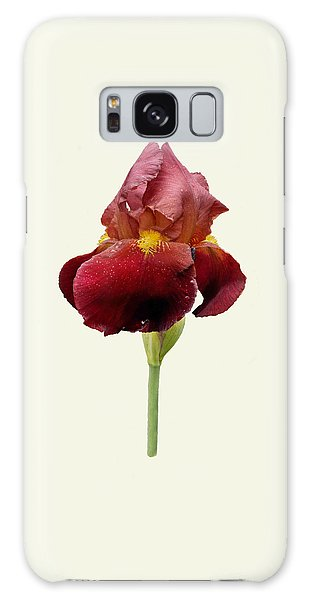 Galaxy Case featuring the photograph Iris Vitafire Cream Background by Paul Gulliver