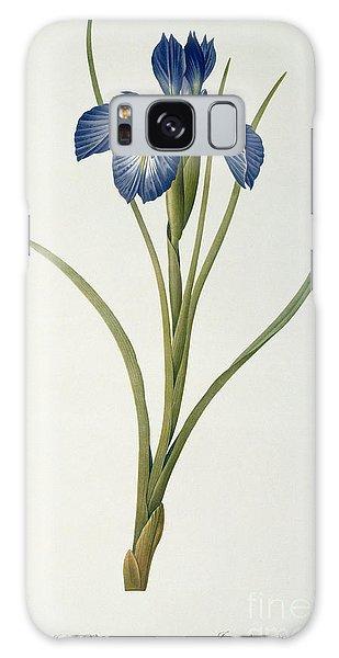 Iris Xyphioides Galaxy Case by Pierre Joseph Redoute