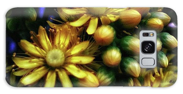 Galaxy Case featuring the photograph Irish Rose. Also Known As Pinwheel by Mr Photojimsf