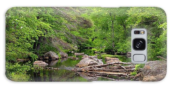 Isinglass River, Barrington, Nh Galaxy Case by Betty Denise