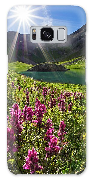 Island Lake Flowers Galaxy Case