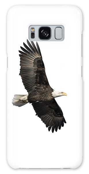 Isolated American Bald Eagle 2016-4 Galaxy Case