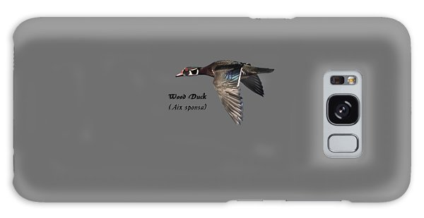 Isolated Wood Duck 2017-1 Galaxy Case by Thomas Young
