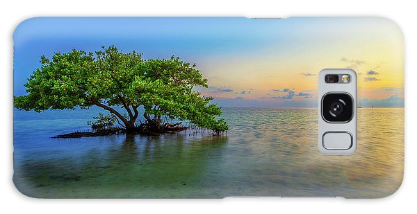 Mangrove Galaxy Case - Isolation by Chad Dutson