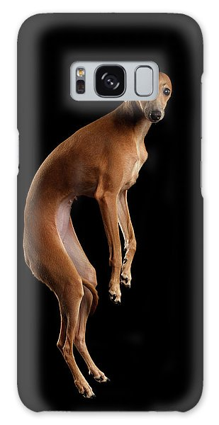 Italian Greyhound Dog Jumping, Hangs In Air, Looking Camera Isolated Galaxy Case