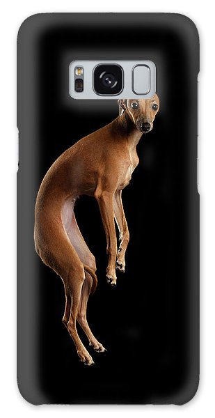 Dog Galaxy Case - Italian Greyhound Dog Jumping, Hangs In Air, Looking Camera Isolated by Sergey Taran
