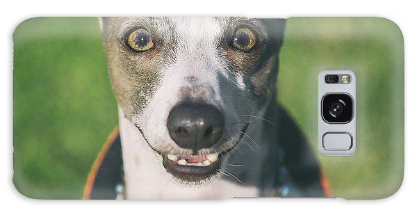 Sighthound Galaxy Case - Italian Greyhound Portrait by Wolf Shadow Photography