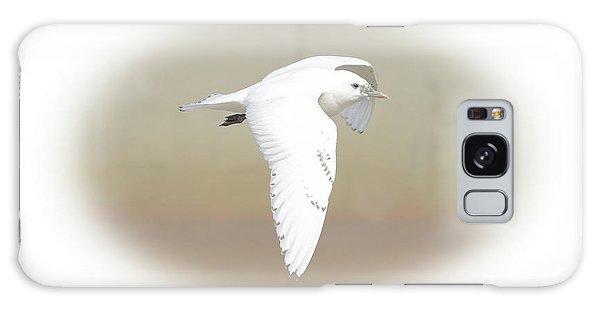 Ivory Gull Galaxy Case