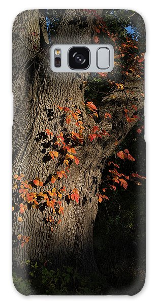Ivy In The Fall Galaxy Case