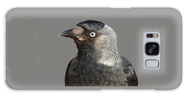 Jackdaw Corvus Monedula Bird Portrait Vector Galaxy Case