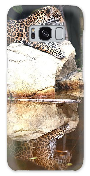 Jaguar At Rest Galaxy Case by Diane Merkle