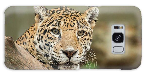 Jaguar Galaxy Case