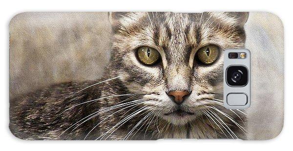 Janie's Kitty Galaxy Case