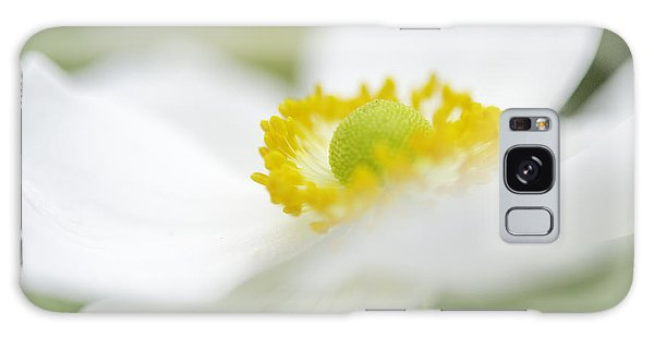 Japanese Anemone Galaxy Case