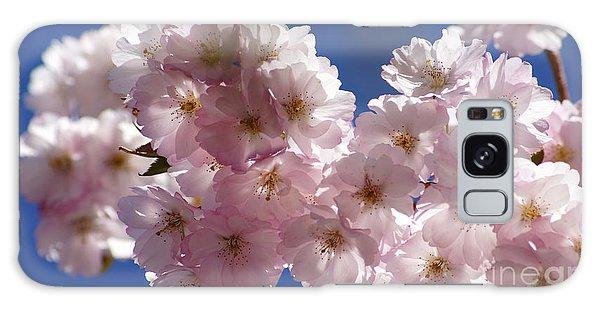 Japanese Flowering Cherry Prunus Serrulata Galaxy Case