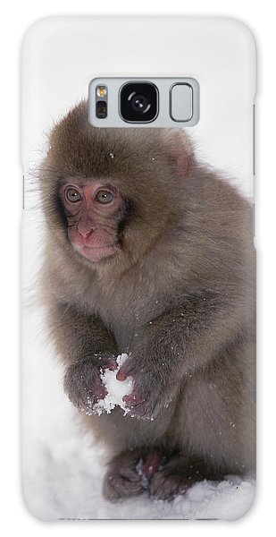 Galaxy Case featuring the photograph Japanese Macaque Macaca Fuscata Baby by Konrad Wothe