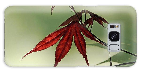 Japanese Maple Leaf Galaxy Case
