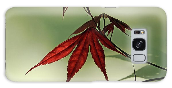 Japanese Maple Leaf Galaxy Case