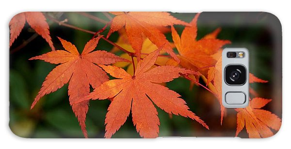 Japanese Maple Leaves Galaxy Case by Patricia Strand