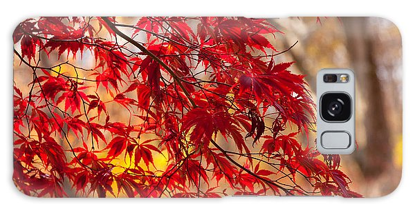 Japanese Maples Galaxy Case by Susan Cole Kelly