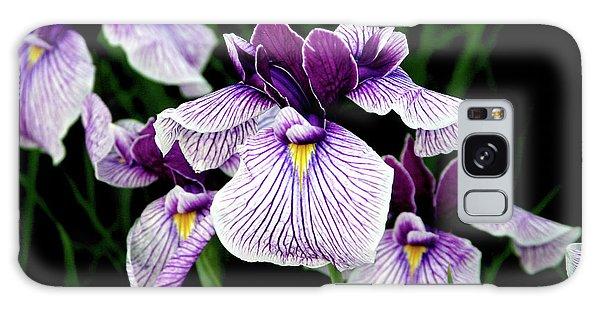 Japanese Water Iris In Purple 2714 H_2 Galaxy Case