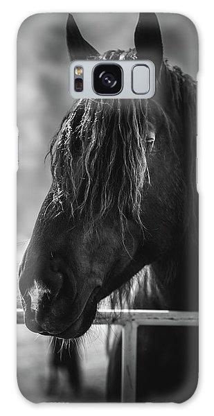 Jay The Rasta Horse Galaxy Case by Debby Herold