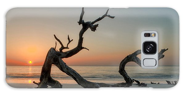 Jekyll Island Driftwood Galaxy Case